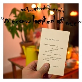 A Crow Looked at Me
