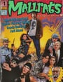 The Mallrats Companion